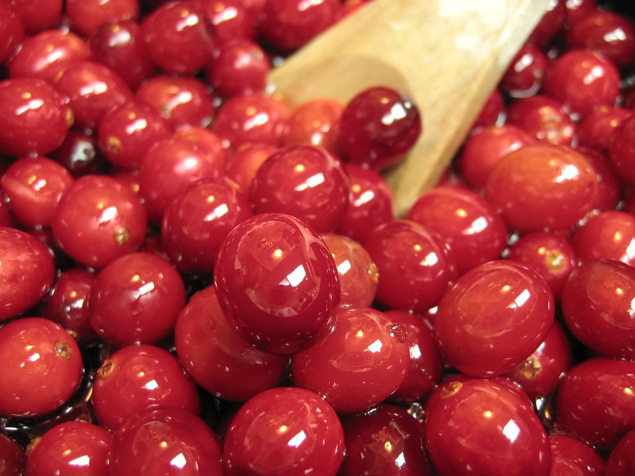 cranberries-3-1329080-1280x960